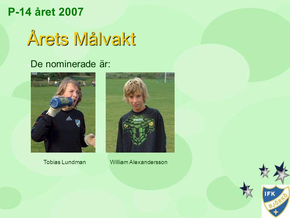 Årets Målvakt P-14 året 2007 De nominerade är: