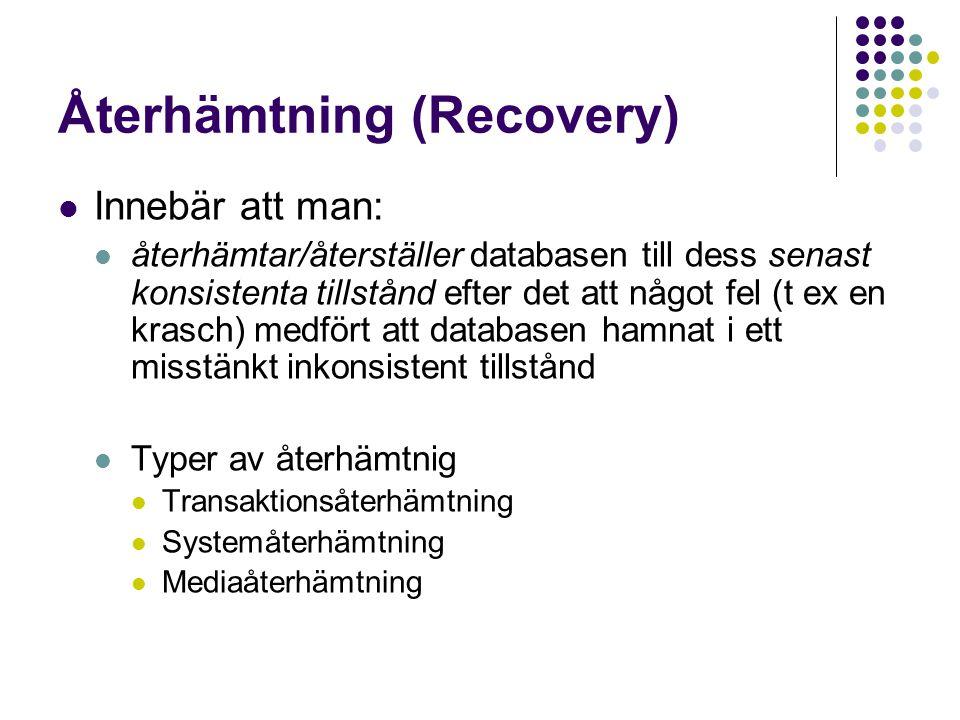Återhämtning (Recovery)