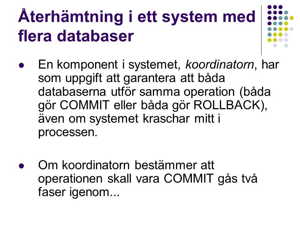 Återhämtning i ett system med flera databaser