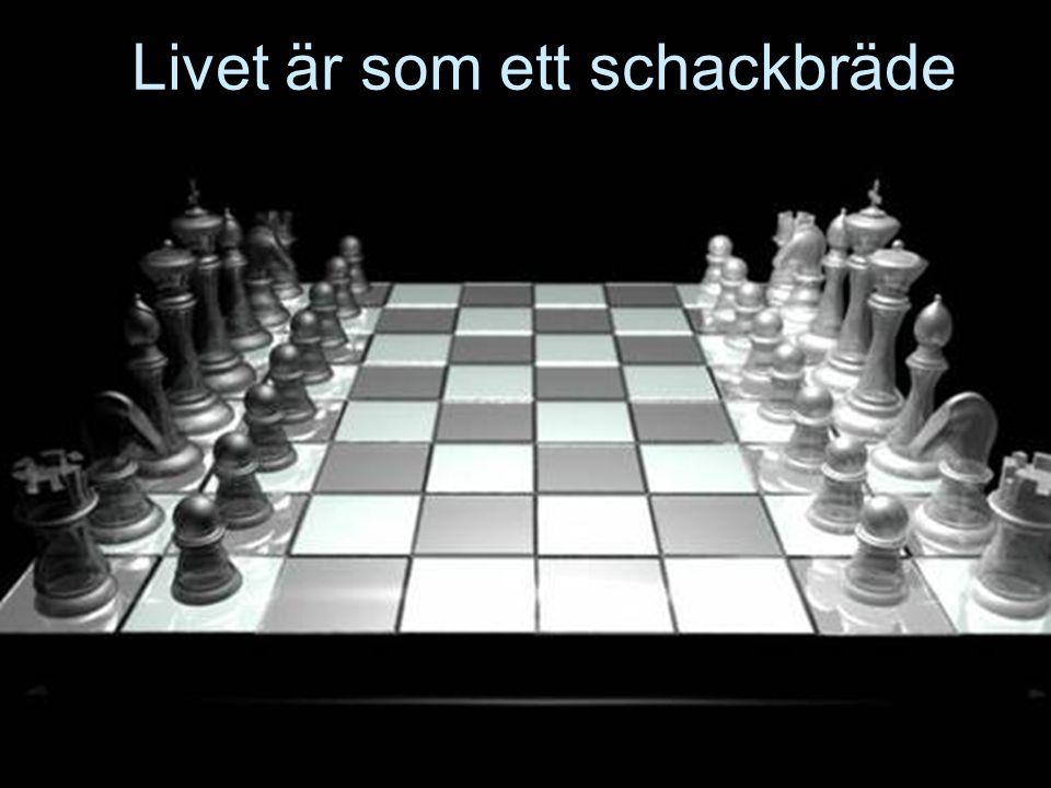 Livet är som ett schackbräde
