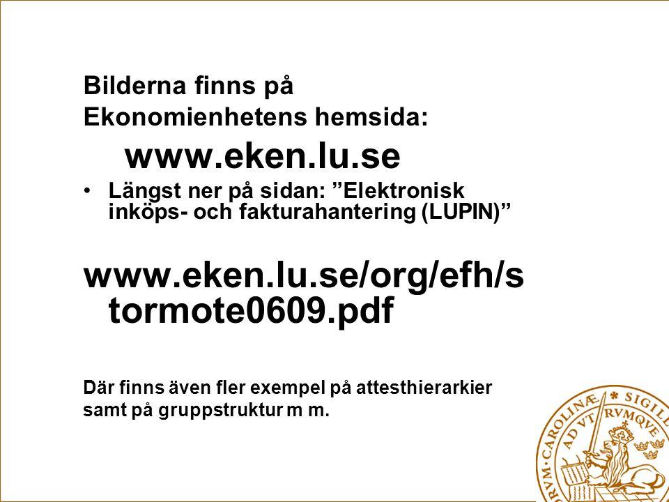 www.eken.lu.se www.eken.lu.se/org/efh/stormote0609.pdf