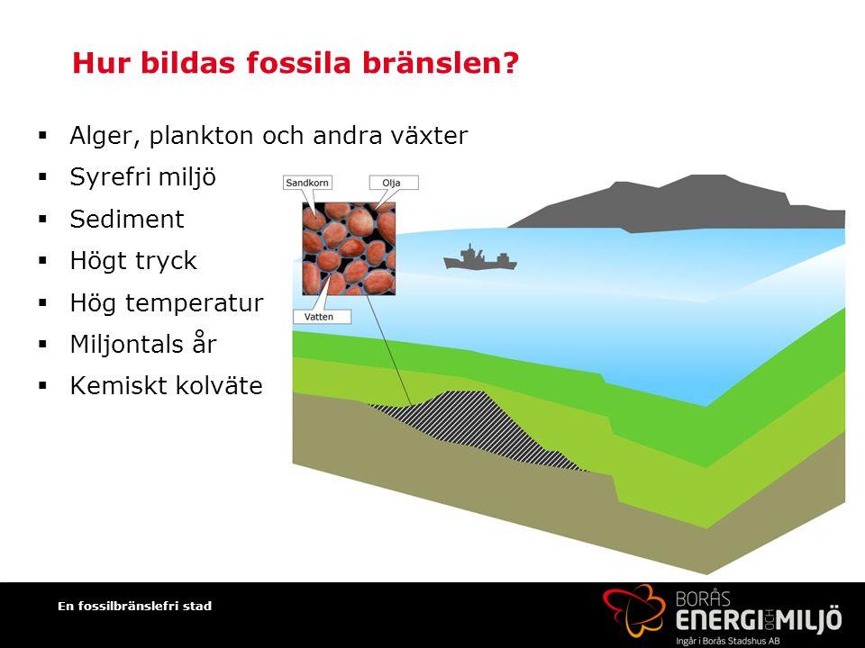 Hur bildas fossila bränslen