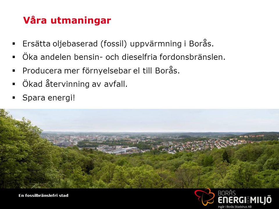 Våra utmaningar Ersätta oljebaserad (fossil) uppvärmning i Borås.