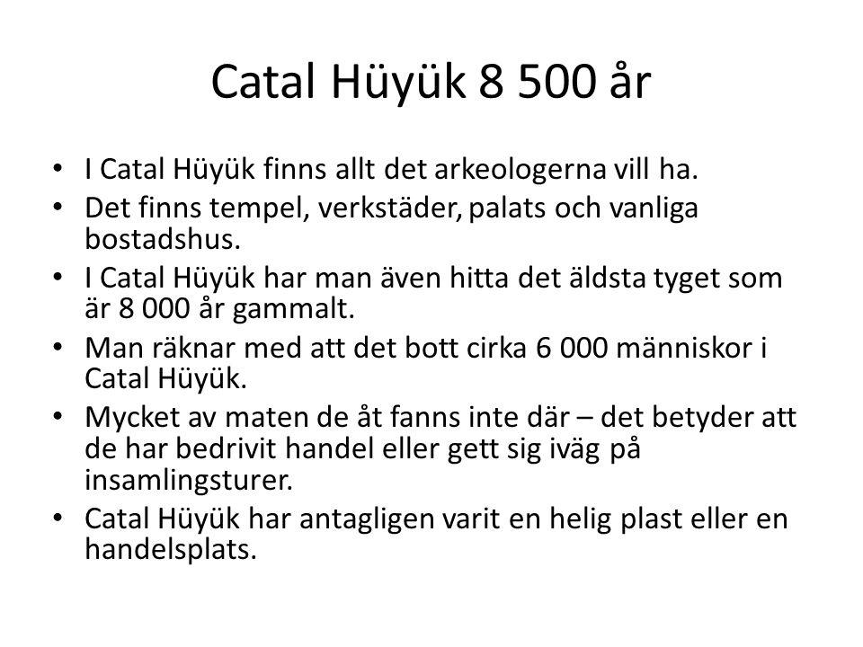 Catal Hüyük 8 500 år I Catal Hüyük finns allt det arkeologerna vill ha. Det finns tempel, verkstäder, palats och vanliga bostadshus.