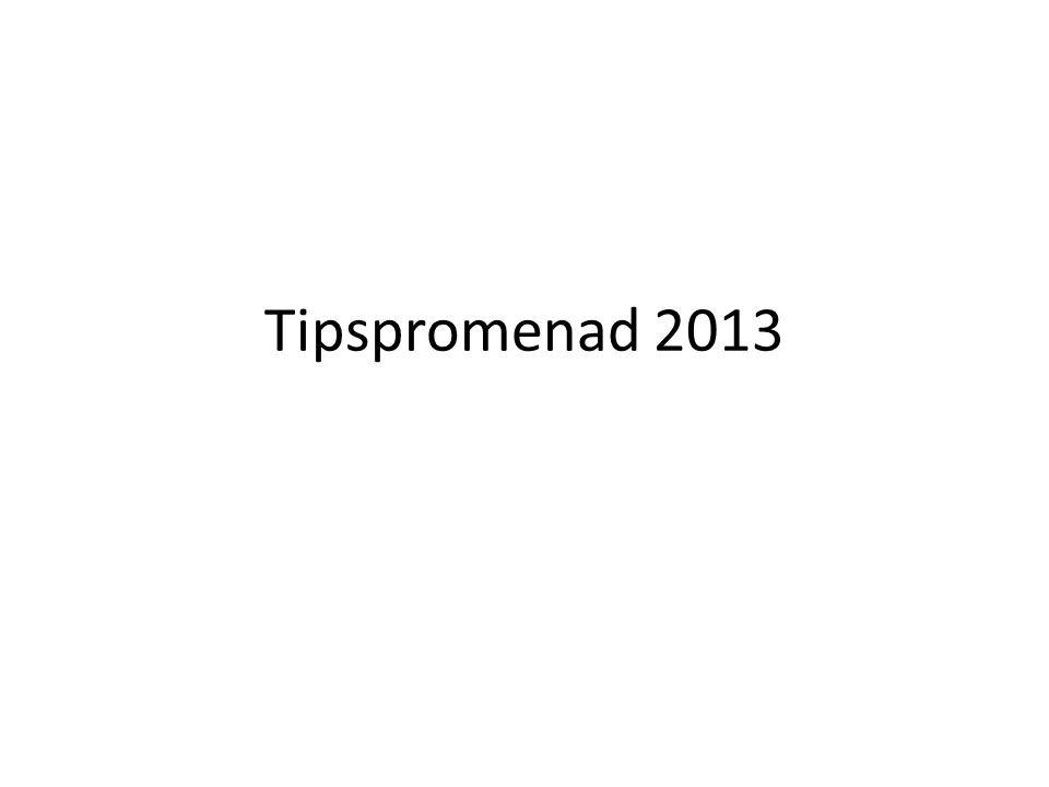 Tipspromenad 2013