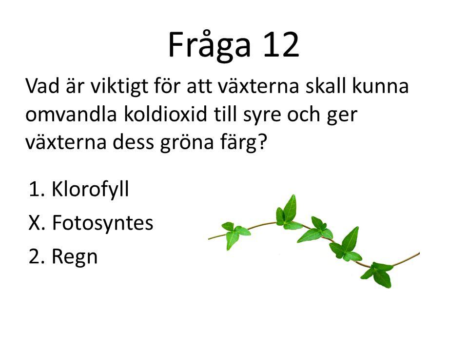 Fråga 12 Vad är viktigt för att växterna skall kunna omvandla koldioxid till syre och ger växterna dess gröna färg
