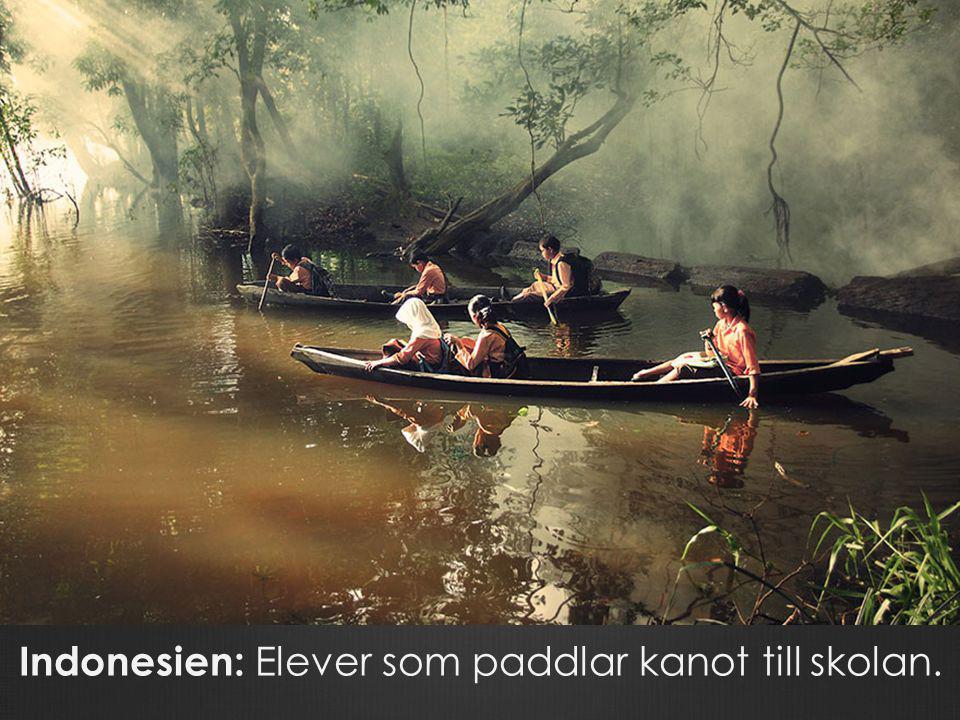 Indonesien: Elever som paddlar kanot till skolan.
