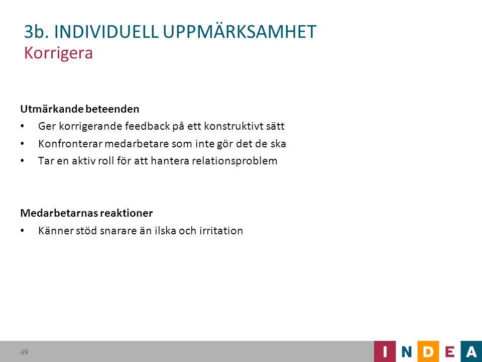 3b. INDIVIDUELL UPPMÄRKSAMHET Korrigera