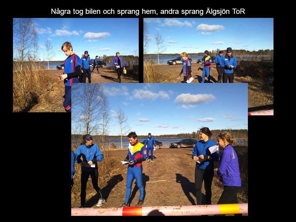 Några tog bilen och sprang hem, andra sprang Älgsjön ToR