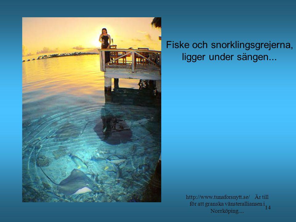 Fiske och snorklingsgrejerna,