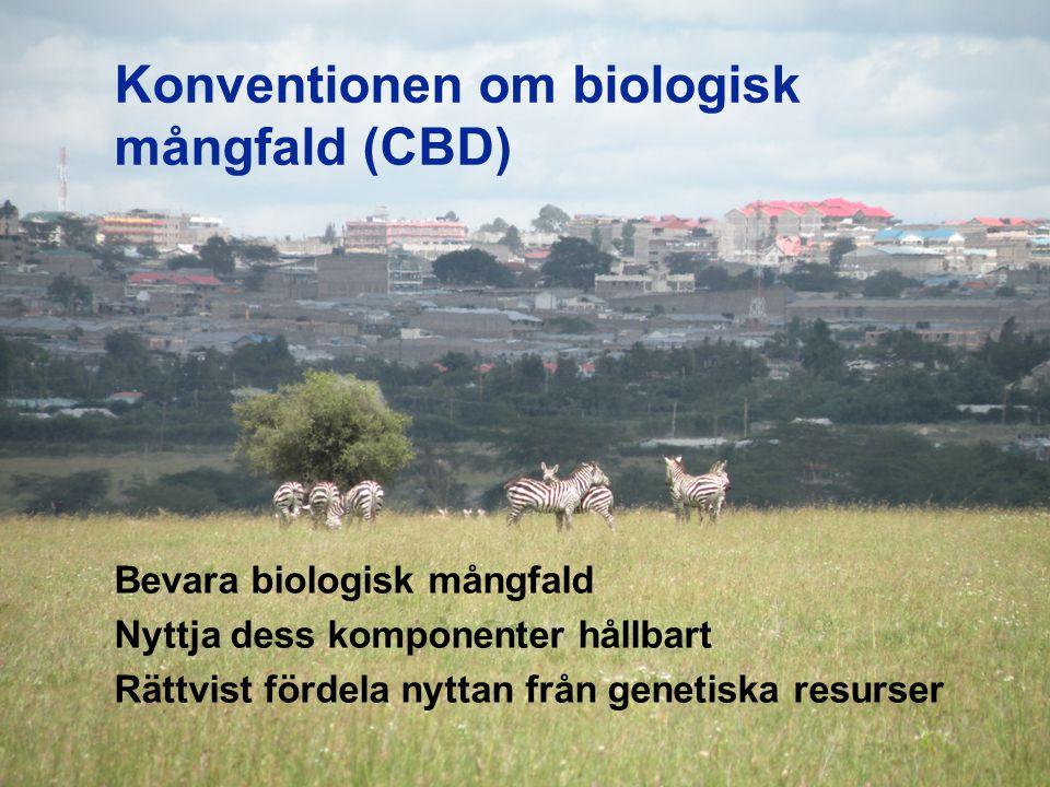 Konventionen om biologisk mångfald (CBD)