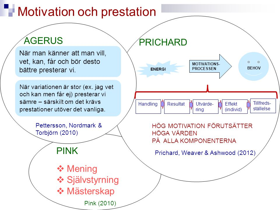 Motivation och prestation
