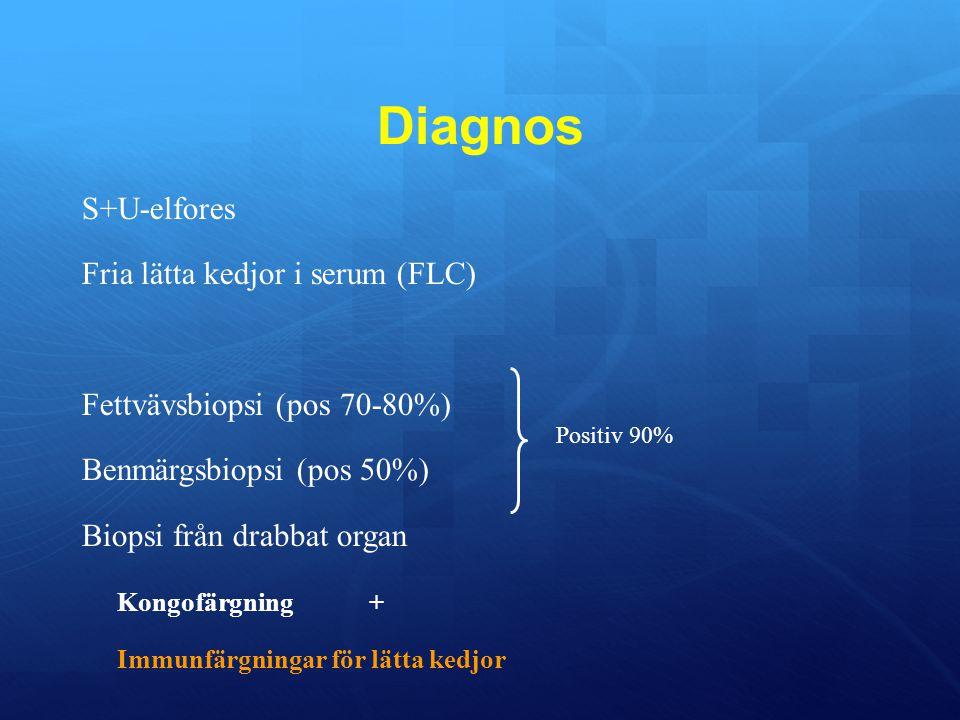 Diagnos S+U-elfores Fria lätta kedjor i serum (FLC)