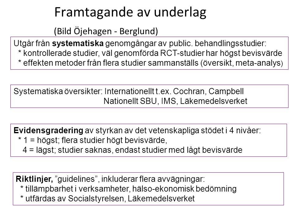 Framtagande av underlag (Bild Öjehagen - Berglund)