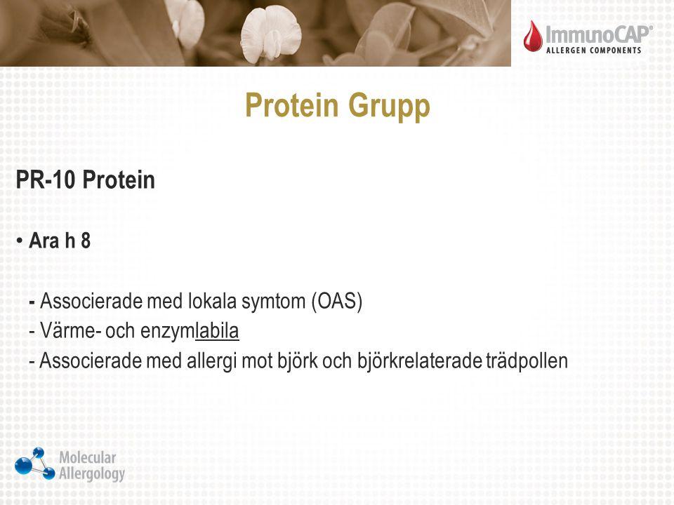 Protein Grupp PR-10 Protein Ara h 8