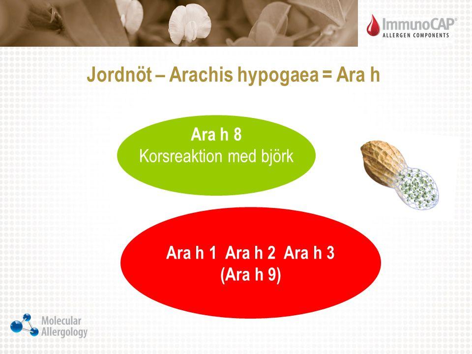 Jordnöt – Arachis hypogaea = Ara h