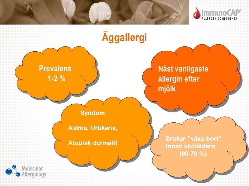 Äggallergi Näst vanligaste allergin efter mjölk 1-2 % Prevalens Symtom