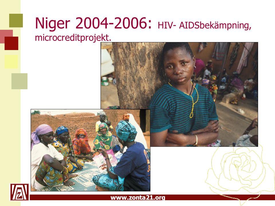 Niger 2004-2006: HIV- AIDSbekämpning, microcreditprojekt.