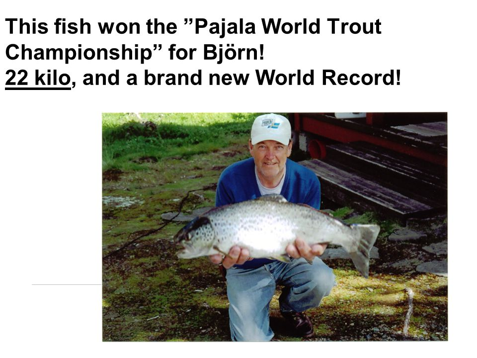 This fish won the Pajala World Trout Championship for Björn