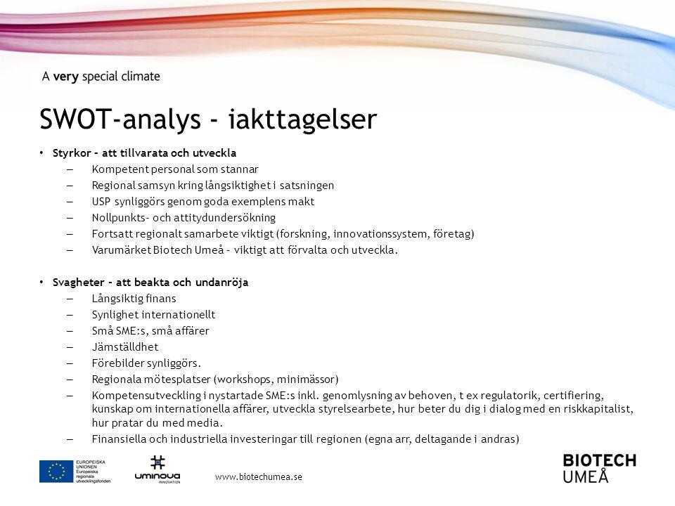 SWOT-analys - iakttagelser