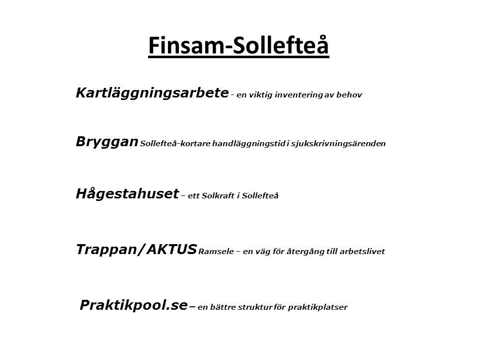 Finsam-Sollefteå Kartläggningsarbete - en viktig inventering av behov