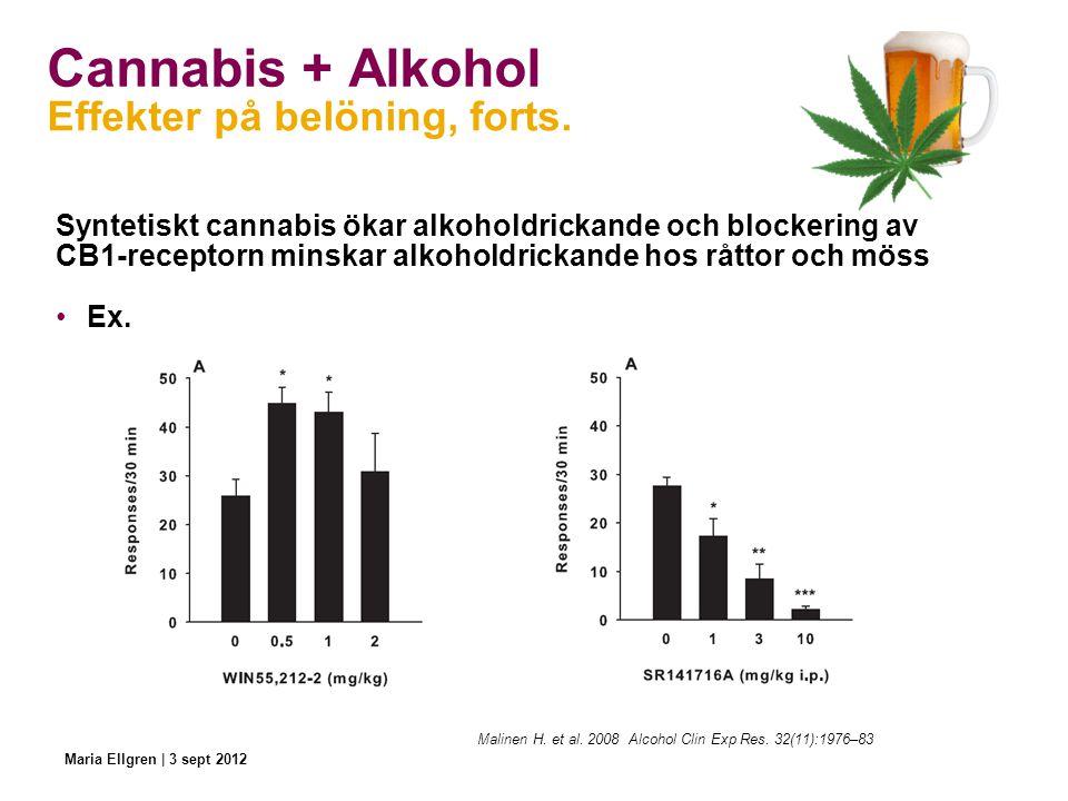 Cannabis + Alkohol Effekter på belöning, forts.