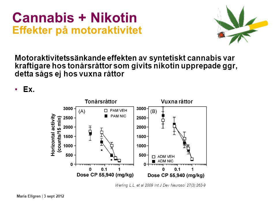 Cannabis + Nikotin Effekter på motoraktivitet