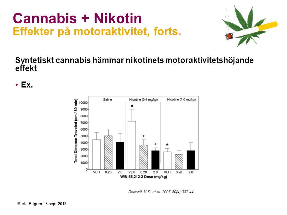 Cannabis + Nikotin Effekter på motoraktivitet, forts.