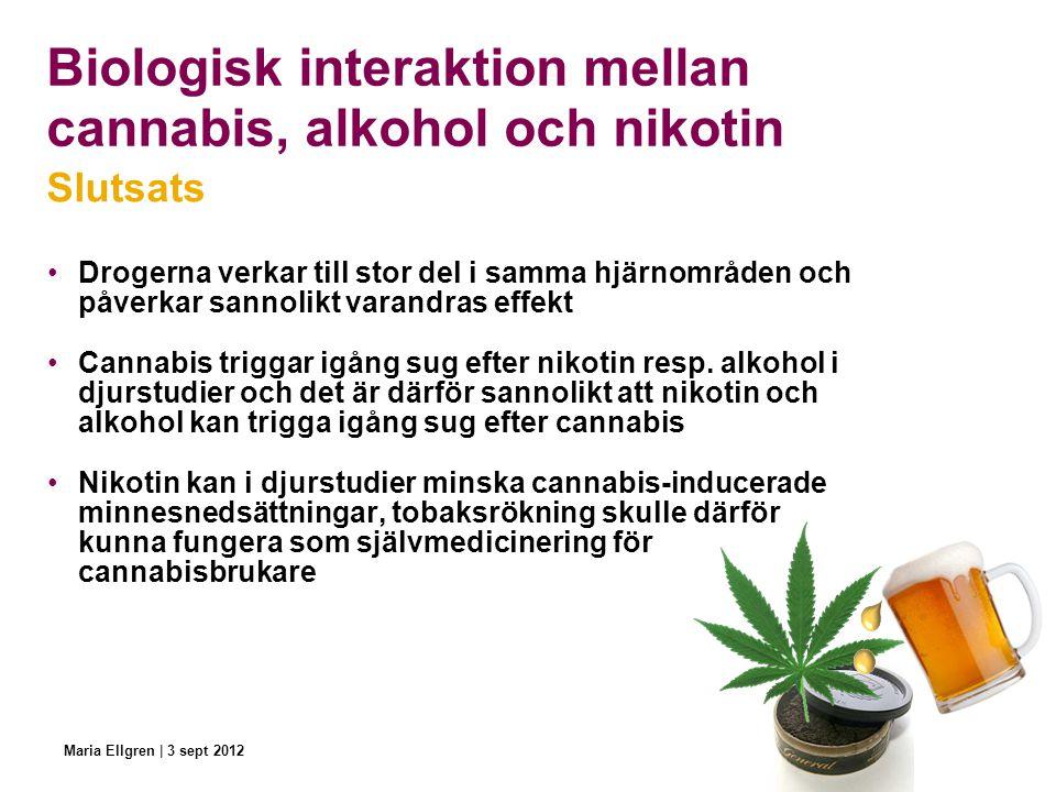 Biologisk interaktion mellan cannabis, alkohol och nikotin