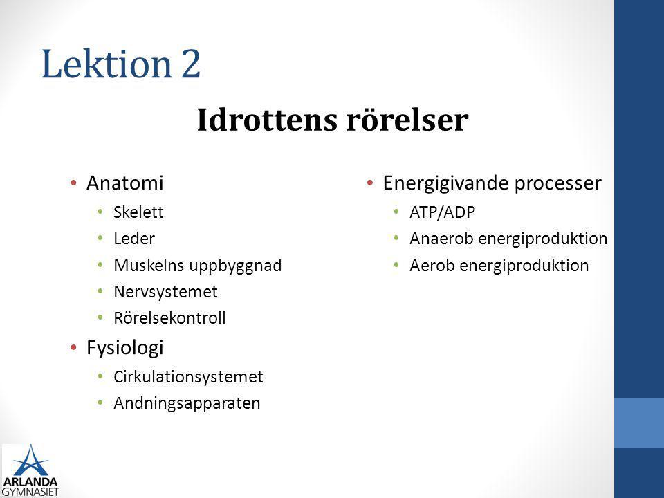 Lektion 2 Idrottens rörelser Anatomi Fysiologi Energigivande processer