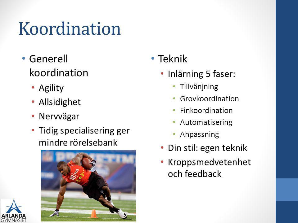 Koordination Generell koordination Teknik Inlärning 5 faser: Agility