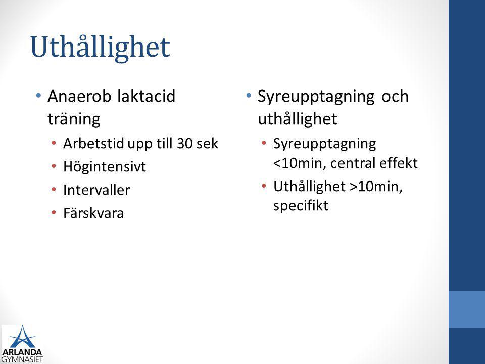 Uthållighet Anaerob laktacid träning Syreupptagning och uthållighet