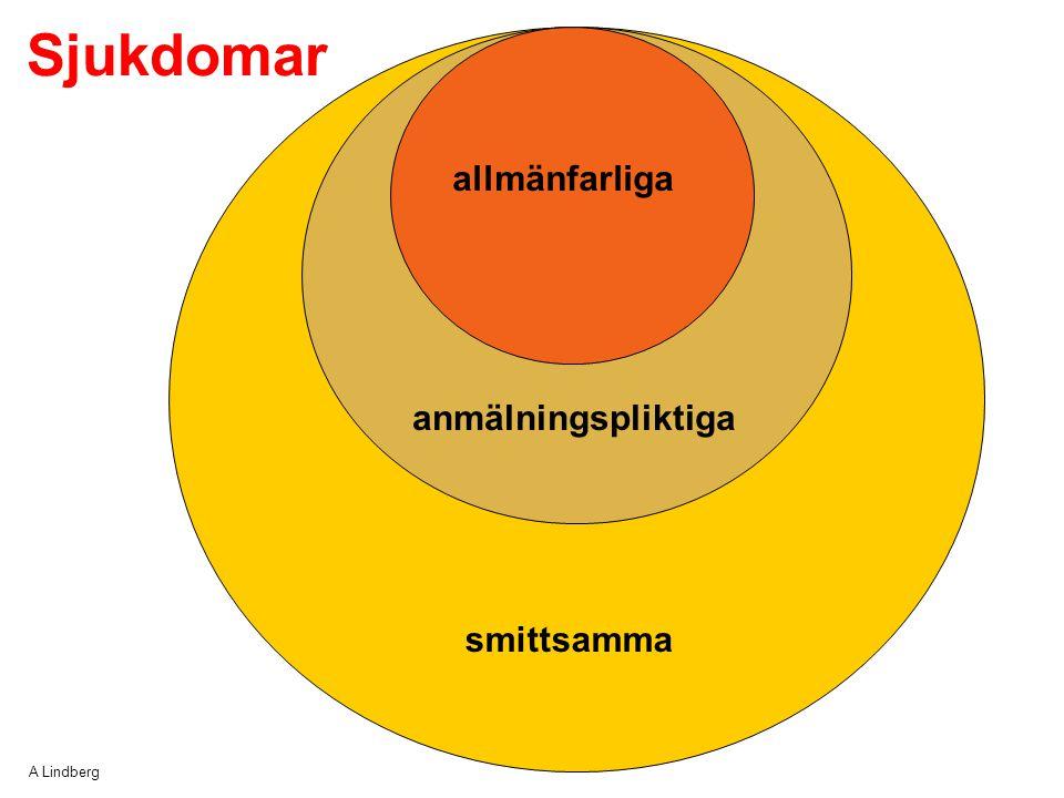 Sjukdomar allmänfarliga anmälningspliktiga smittsamma A Lindberg