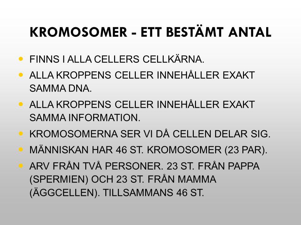 Kromosomer - ett bestämt antal
