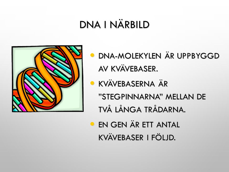 Dna i närbild Dna-molekylen är uppbyggd av kvävebaser.