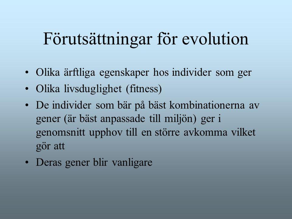 Förutsättningar för evolution