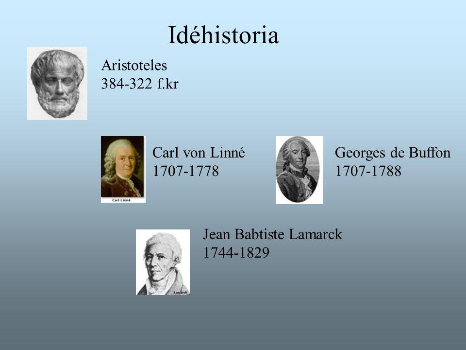 Idéhistoria Aristoteles 384-322 f.kr Carl von Linné 1707-1778