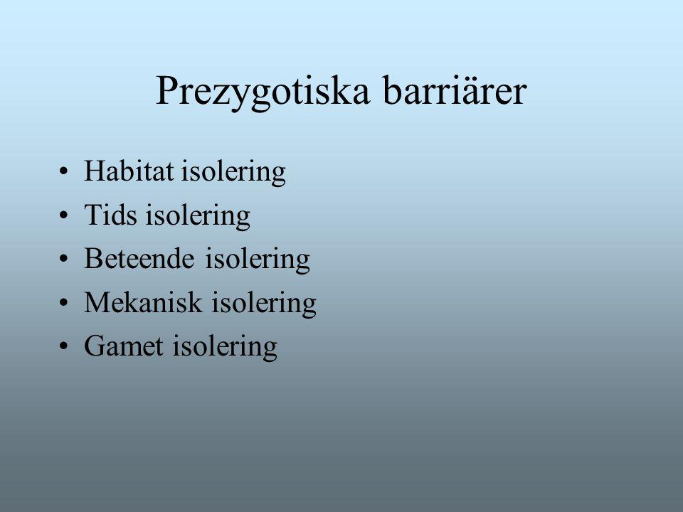 Prezygotiska barriärer