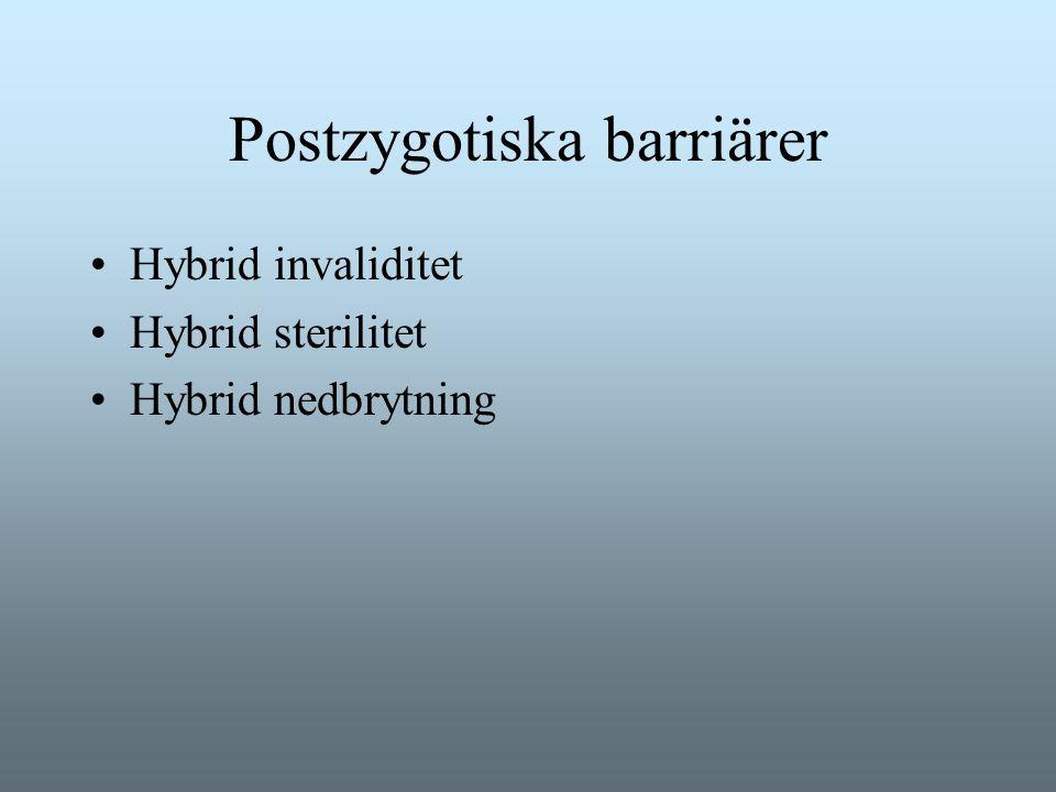 Postzygotiska barriärer