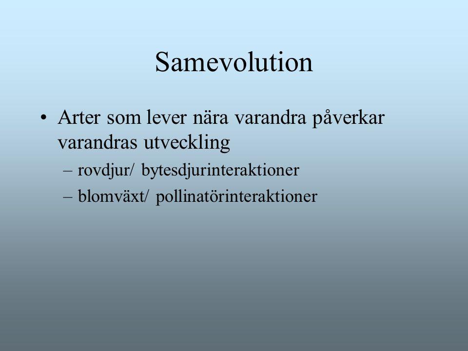 Samevolution Arter som lever nära varandra påverkar varandras utveckling. rovdjur/ bytesdjurinteraktioner.