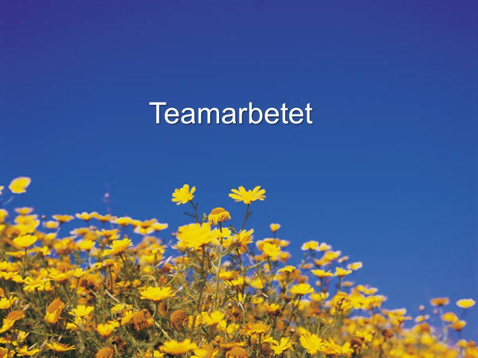 Teamarbetet