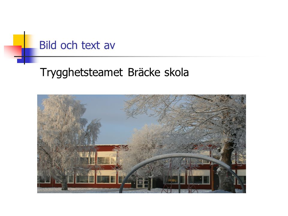 Bild och text av Trygghetsteamet Bräcke skola