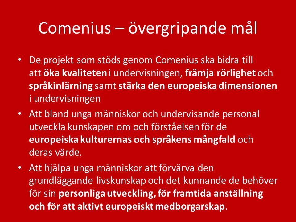 Comenius – övergripande mål