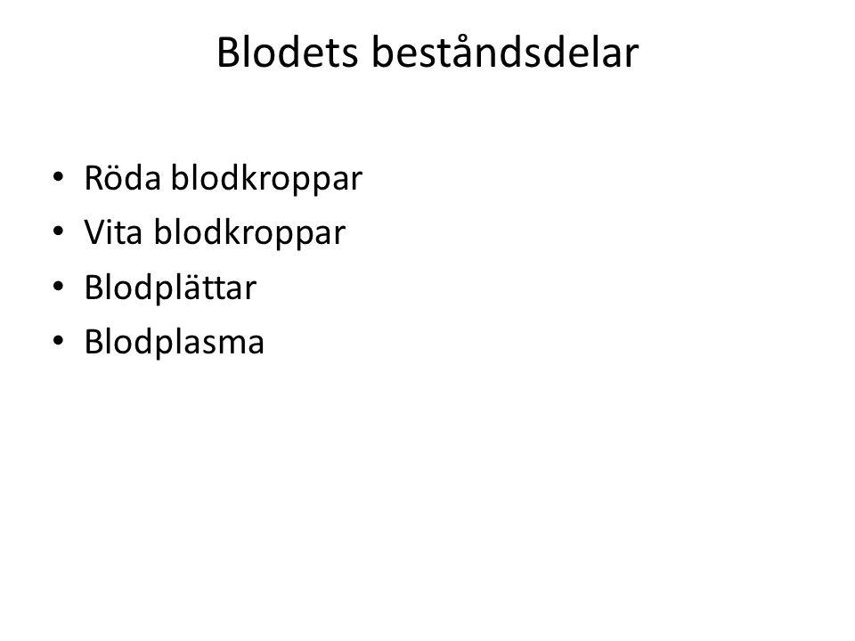 Blodets beståndsdelar