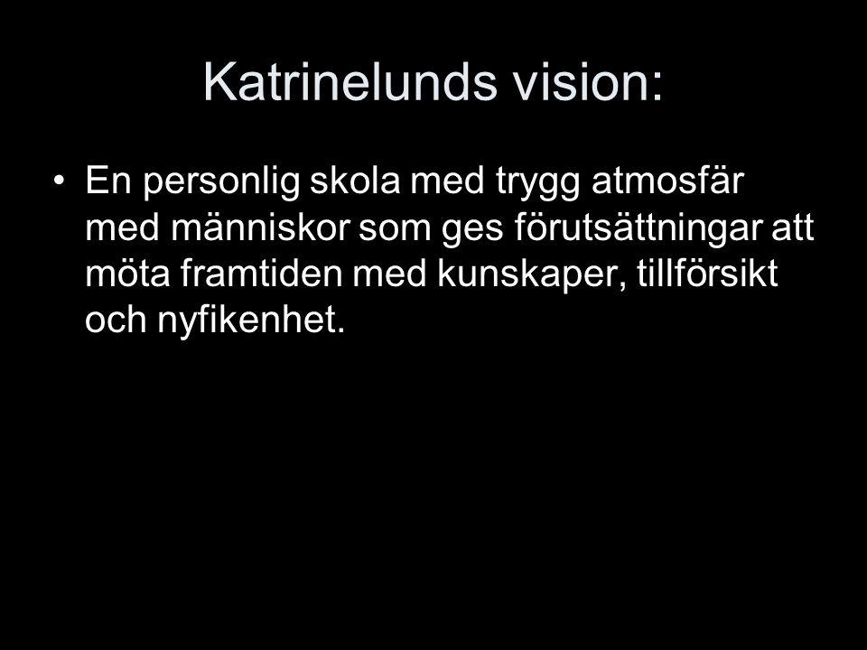 Katrinelunds vision: