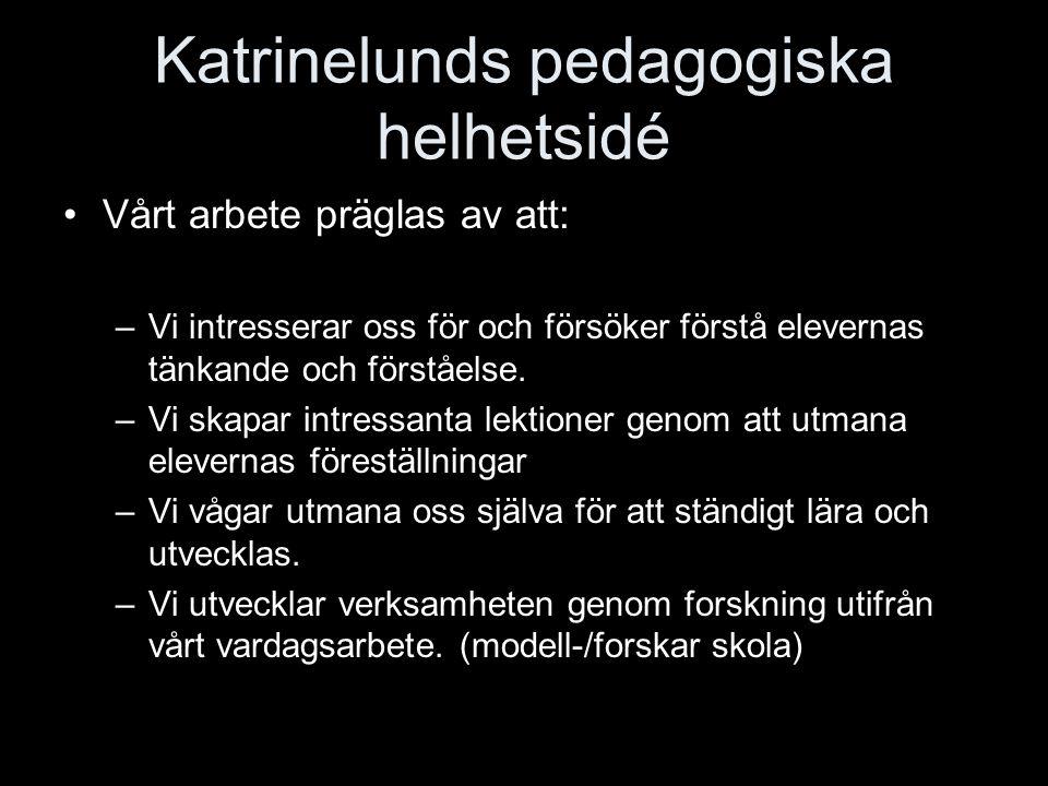 Katrinelunds pedagogiska helhetsidé