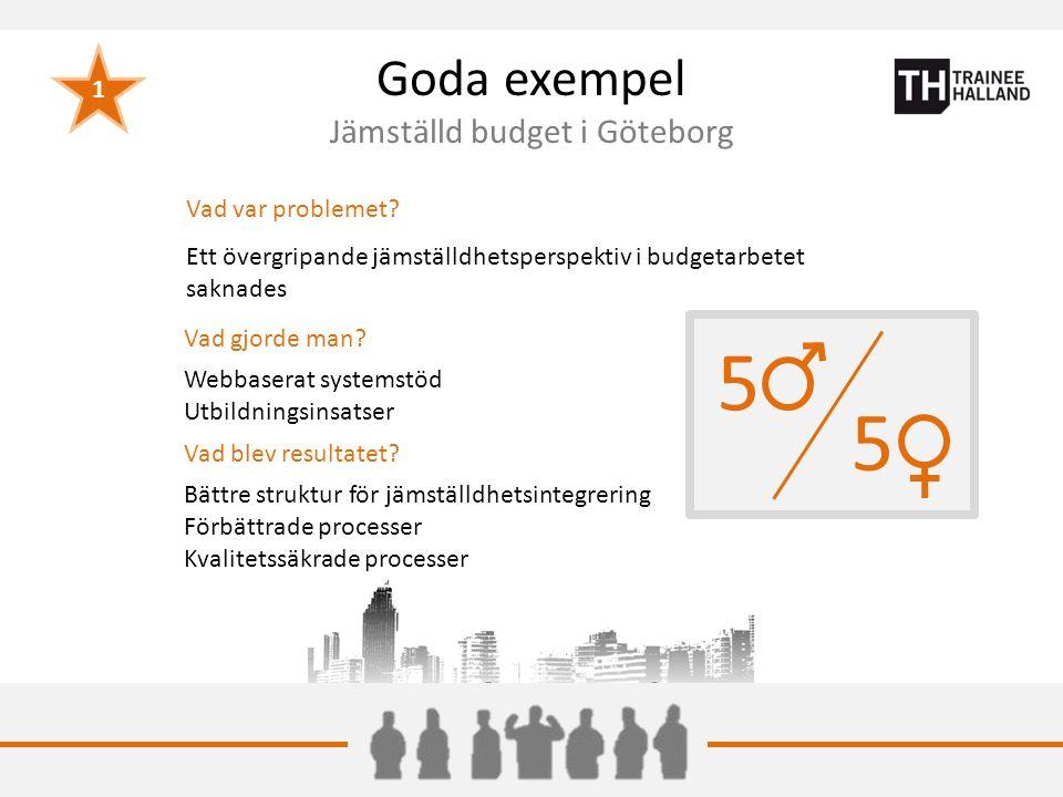 Goda exempel Jämställd budget i Göteborg