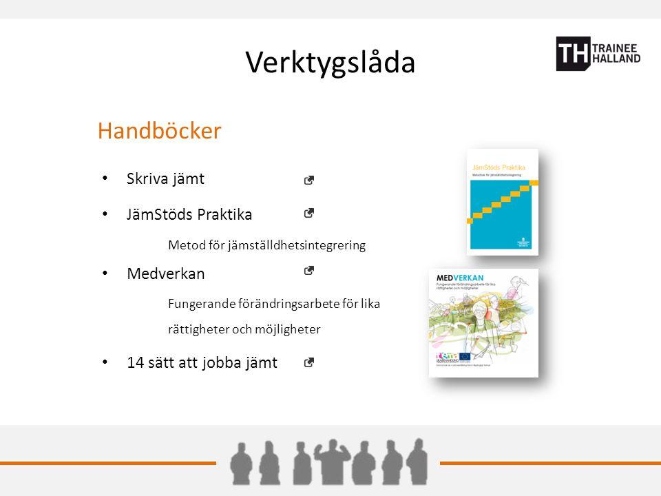 Verktygslåda Handböcker Skriva jämt JämStöds Praktika