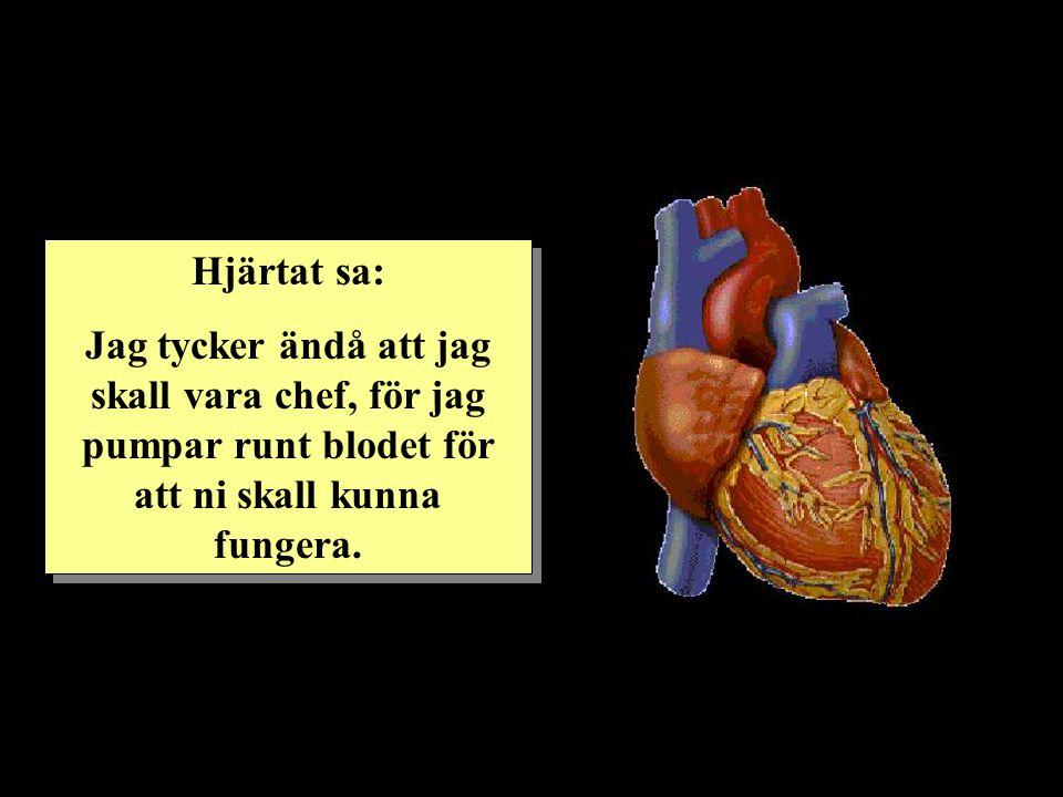 Hjärtat sa: Jag tycker ändå att jag skall vara chef, för jag pumpar runt blodet för att ni skall kunna fungera.