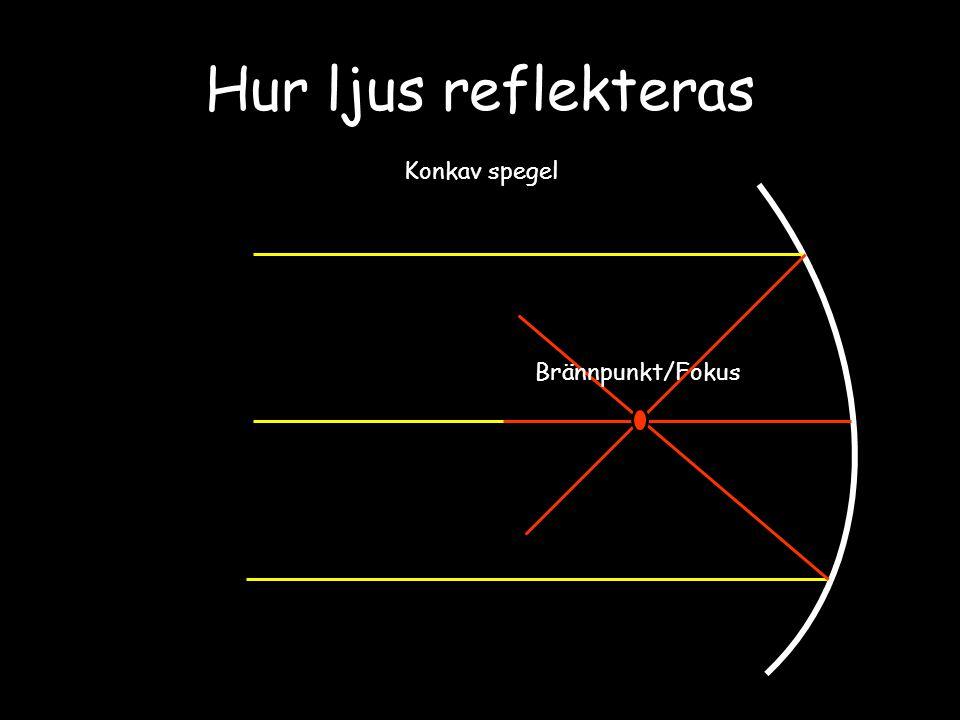 Hur ljus reflekteras Konkav spegel Brännpunkt/Fokus